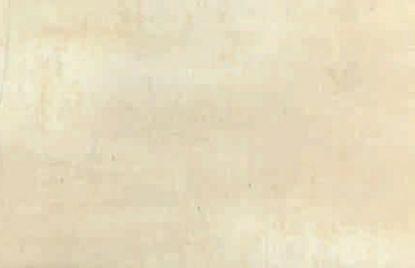 Ceramic tiles 20×50 Crema